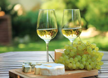 Various sorts of cheese and white wine. Various sorts of cheese, grapes and two glasses of the white wine Stock Image