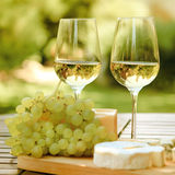 Various sorts of cheese and white wine. Various sorts of cheese, grapes and two glasses of the white wine Royalty Free Stock Images