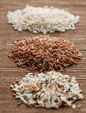 Various sorts of rice Royalty Free Stock Photo