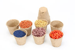 Various sowing seed Stock Image