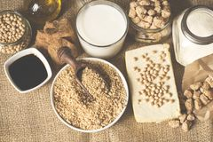 Soy products royalty free stock images