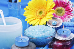 Various spa products Royalty Free Stock Photo