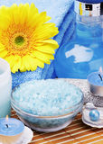 Various spa products Stock Image