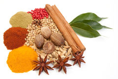 Various spices Stock Image