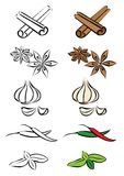 Various spices. Various herbs and spices  illustration Stock Photos