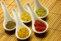 Various spices. White spoons with various kinds of spices over bamboo background stock image