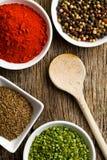 Various spices. Stock Photos