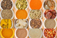 various spices all over the world Royalty Free Stock Photography