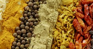 Various spices arranged in row 4k. Close-up of various spices arranged in row 4k stock footage