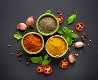 Various spices on black background Royalty Free Stock Photography