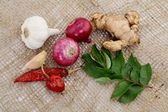 Various spices on burlap sack Stock Photos