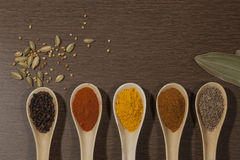 Various spices in ceramic spoon on wooden backgound Royalty Free Stock Image