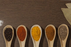 Various spices in ceramic spoon on wooden backgound Stock Photos