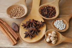 Various spices for chinese food boiled Royalty Free Stock Image