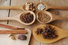Various spices for chinese food boiled Stock Images