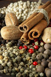 Various spices close-up Royalty Free Stock Image