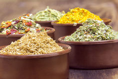 Various spices in containers Royalty Free Stock Images
