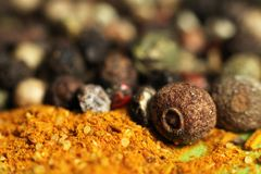Various spices for cooking so close Royalty Free Stock Images