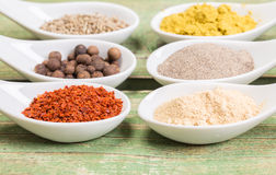 Various spices on green wooden table Royalty Free Stock Images