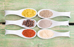 Various spices on green wooden table Stock Images