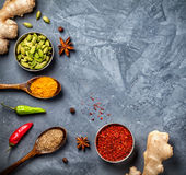 Various Spices on grunge background Stock Image