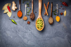 Various Spices on grunge background Stock Photography