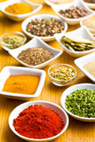 Various spices and herbs. Stock Image