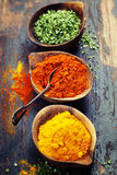 Various spices and herbs Royalty Free Stock Image