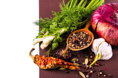 Various spices and herbs, onion and garlik Royalty Free Stock Image