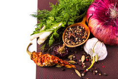 Various spices and herbs, onion and garlik Royalty Free Stock Images