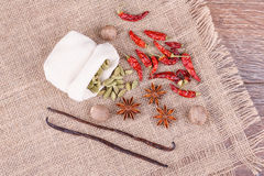 Various spices Royalty Free Stock Image