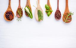 Various of spices and herbs on wooden background. Flat lay spices ingredients rosemary, thyme, oregano, sage leaves and sweet basi. L on white wooden royalty free stock image