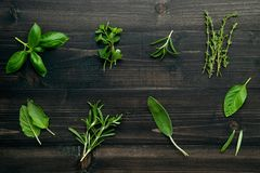 Various of spices and herbs on wooden background. Flat lay spices ingredients rosemary, thyme, oregano, sage leaves and sweet stock photos