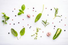 Various of spices and herbs on wooden background. Flat lay spices ingredients rosemary, thyme, oregano, sage leaves and sweet basi. L wooden background royalty free stock image