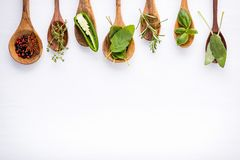Various of spices and herbs on wooden background. Flat lay spices ingredients rosemary, thyme, oregano, sage leaves and sweet basi. L wooden background stock image