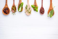 Various of spices and herbs on wooden background. Flat lay spices ingredients rosemary, thyme, oregano, sage leaves and sweet basi. L wooden background stock photos