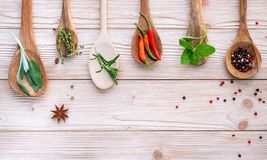 Various of spices and herbs in wooden spoons. Flat lay spices in stock photography