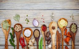 Various of spices and herbs in wooden spoons. Flat lay of spices ingredients chilli ,pepper corn, garlic, thyme, oregano, cinnamon royalty free stock images