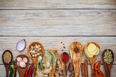 Various of spices and herbs in wooden spoons. Flat lay of spices stock photography