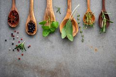 Various of spices and herbs in wooden spoons. Flat lay spices in stock photo