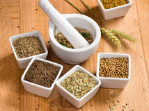 Various spices and mortar Royalty Free Stock Photos