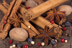 Various spices (nutmeg, cinnamon, star anise,cardamom, juniper) Stock Photography