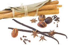 Various spices over white background. Cinnamon sticks, bay leafs, nutmeg, vanilla sticks, anise, cloves, over white background Royalty Free Stock Images