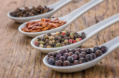 Various spices in porcelain spoons Stock Photography