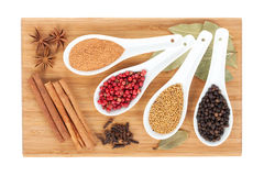 Various spices selection Stock Images