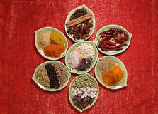 Various Spices in seven  plates on glitter Royalty Free Stock Image