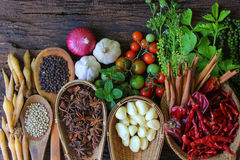 Various spices. Stock Images