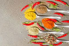Various spices in a spoon on grey background stock image