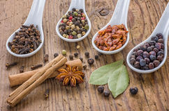 Various spices in spoons Royalty Free Stock Photo