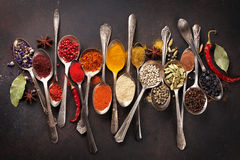 Various spices spoons on stone table. Top view royalty free stock photo